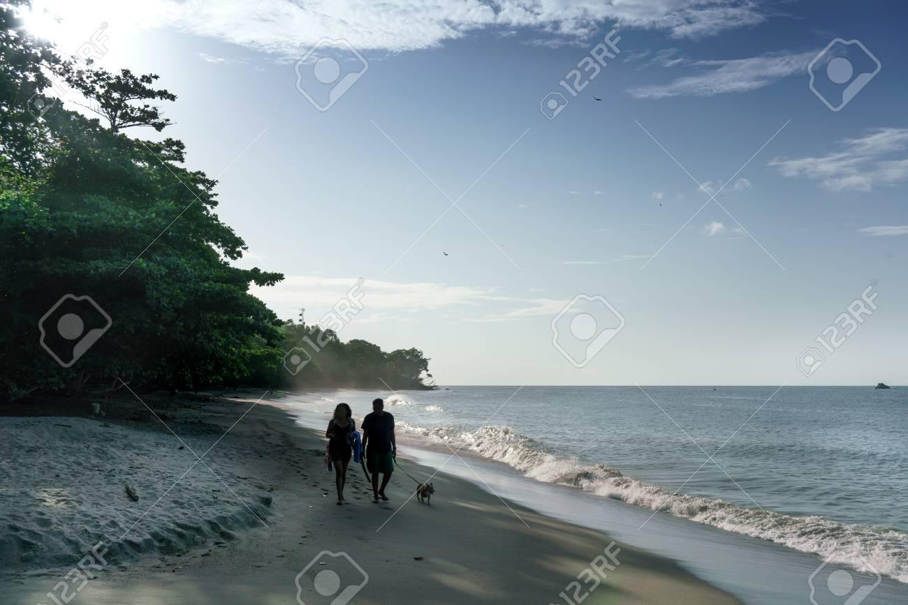 Temas De Animales, Playa, Color Image, Pareja - Relación, Día ...