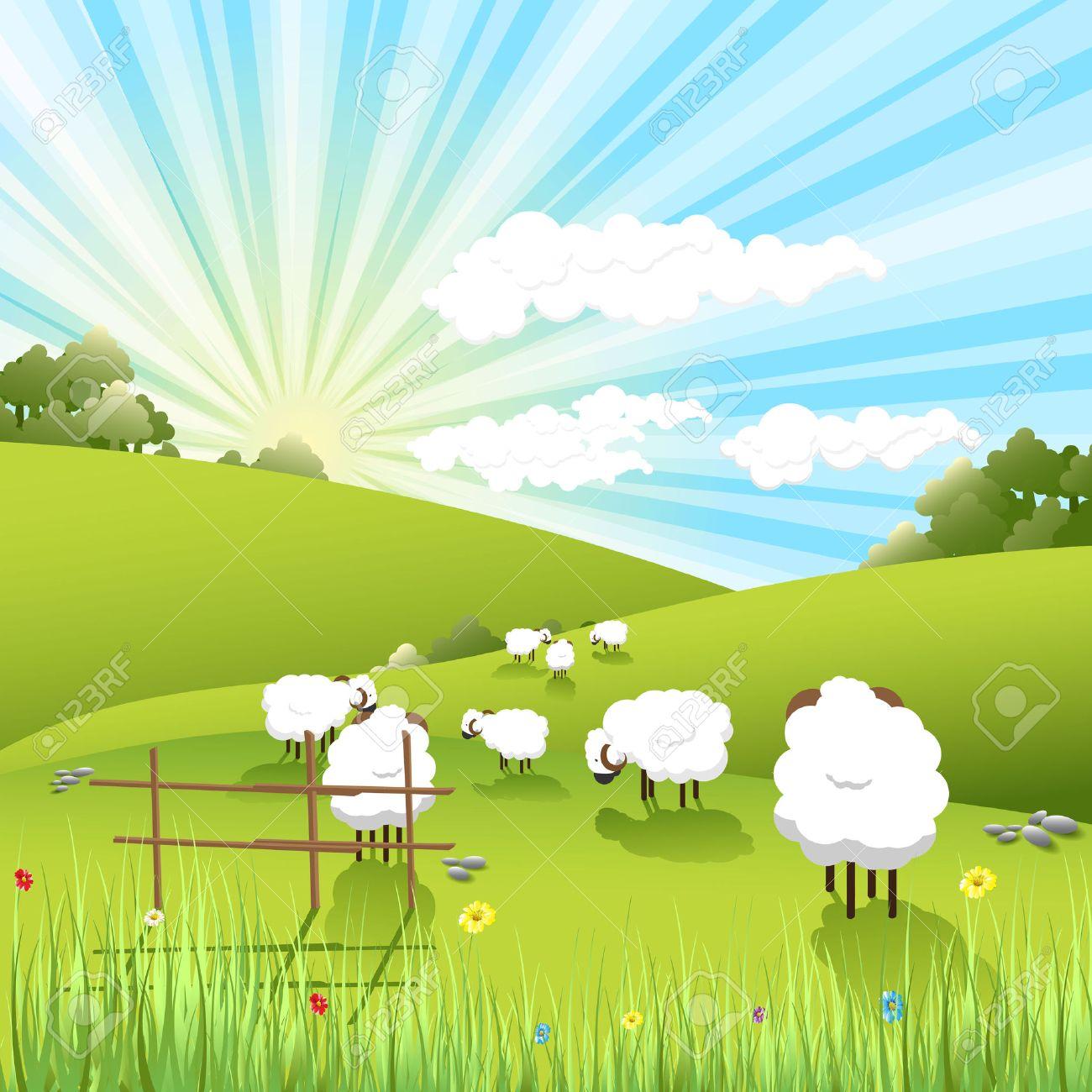 sheeps - 7359772