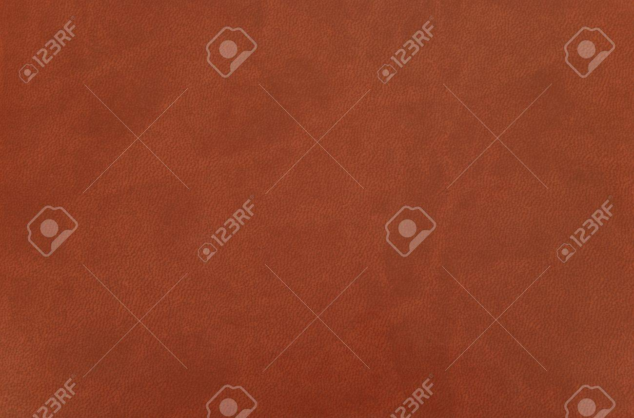 Brown leather Stock Photo - 10036829