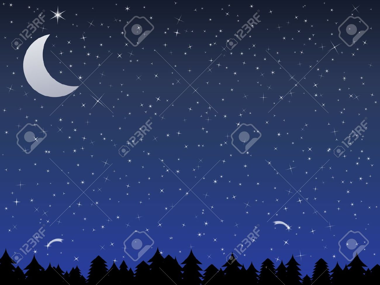 Silhouette of a forest and night sky with stars and moon, vector illustration - 11030292