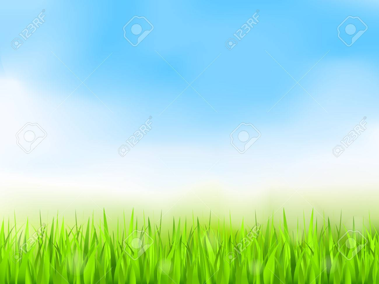 Green grass and blue sky, summer background - 35599895