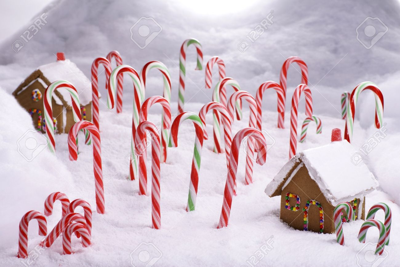 Ginger Bread Cottages In Candy Cane Forest Stock Photo Picture