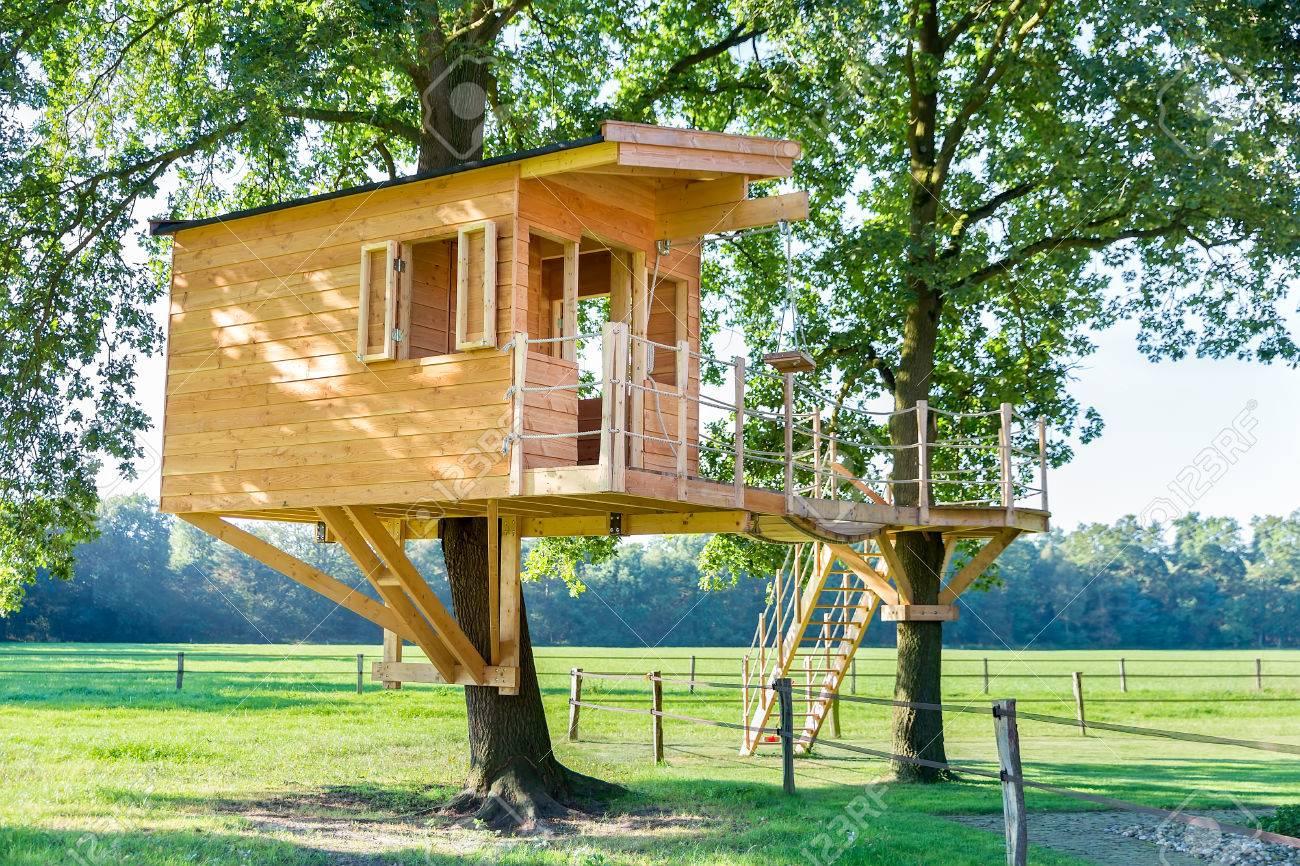 De Nueva Construccion Cabana En Un Arbol De Madera En Los Arboles De - Cabaas-de-madera-en-arboles