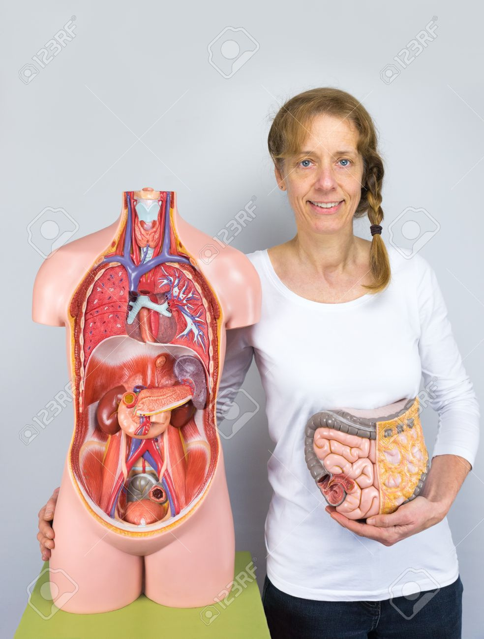 Caucasian Woman Showing Intestines Model And Human Body As Torso ...