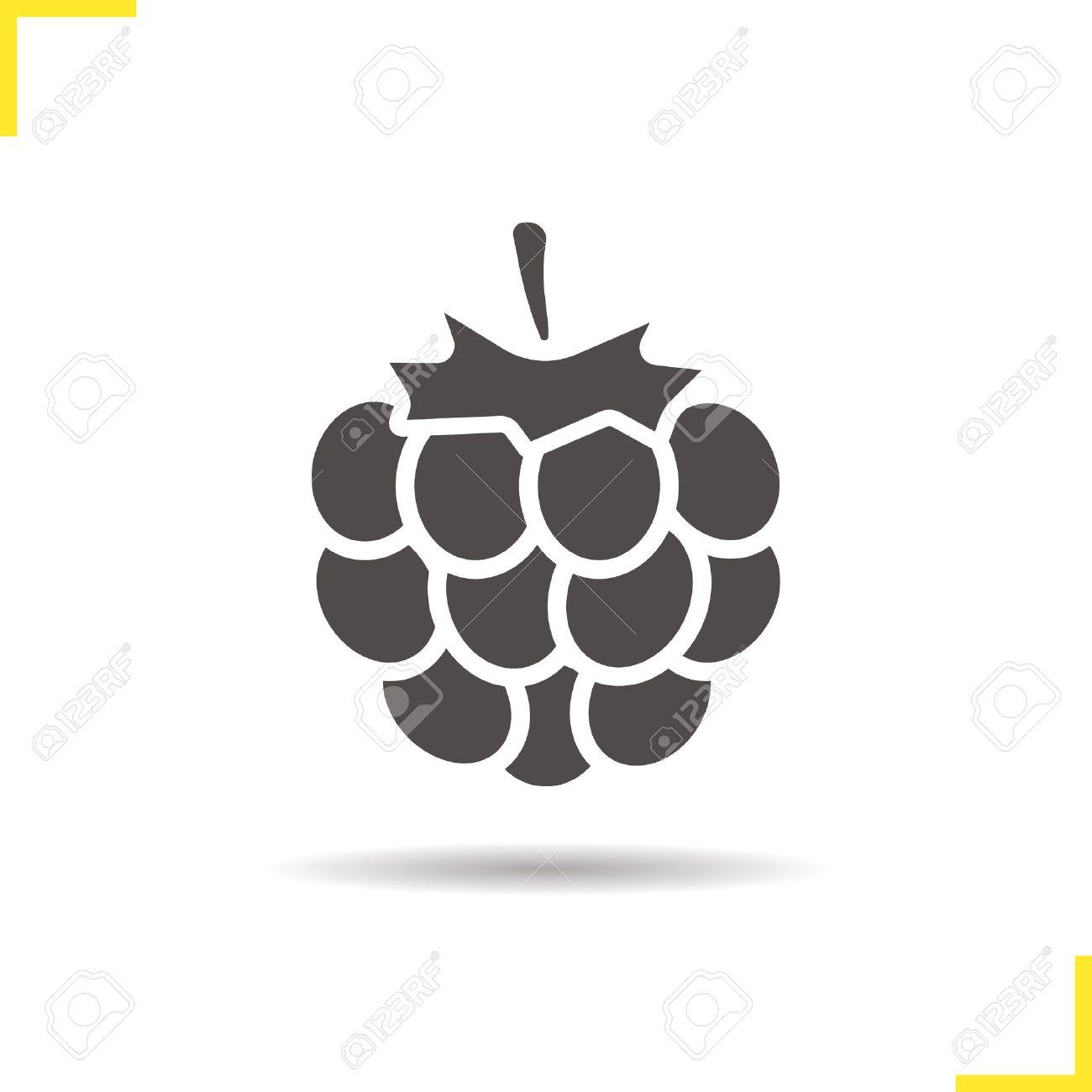 Raspberry icon. Drop shadow blackberry silhouette symbol. Raspberry berry. Vector isolated illustration - 62327791