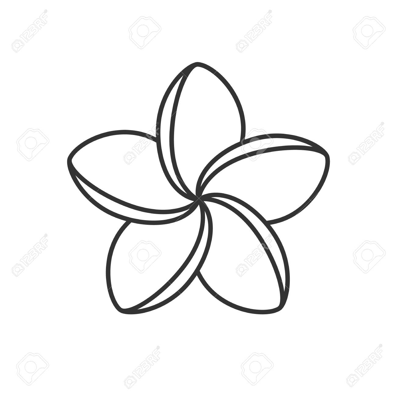 spa salon plumeria flower linear icon thin line illustration rh 123rf com plumeria clipart black and white plumeria clipart black and white