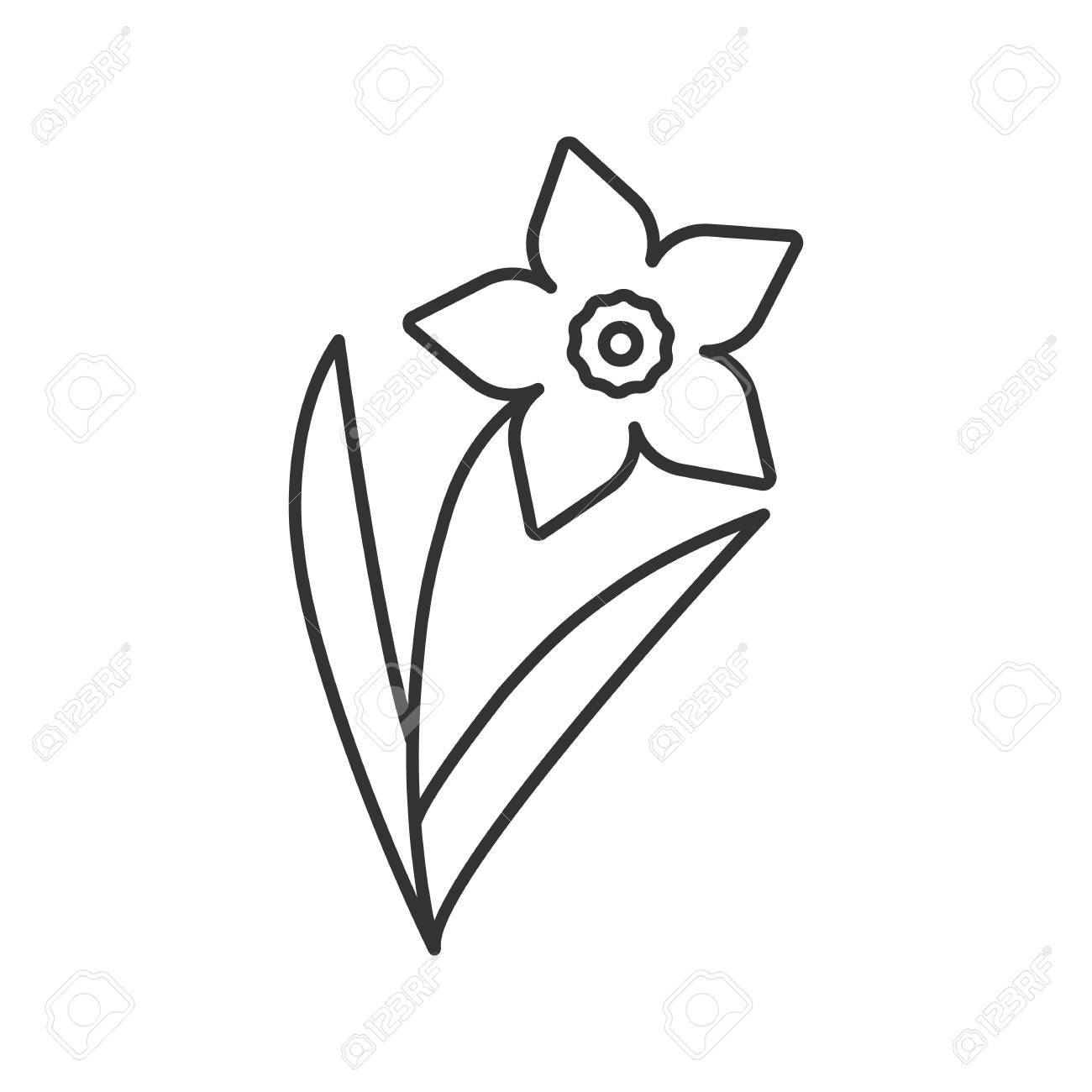 Narcissus jonquil linear icon garden spring flower thin line vector isolated outline drawing narcissus jonquil linear icon garden spring flower thin line illustration flowering plant contour mightylinksfo Gallery