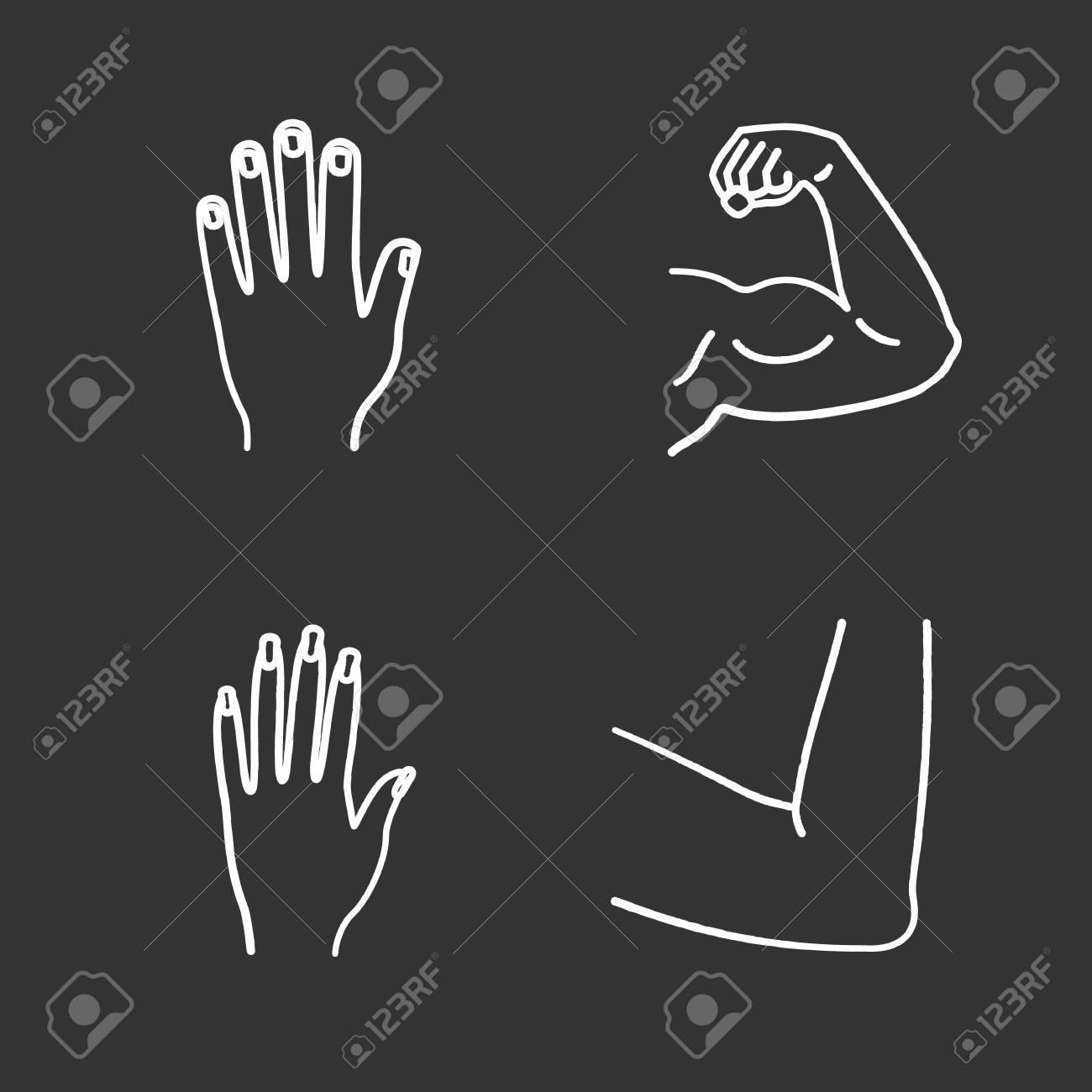 Conjunto De Iconos De Tiza De Partes Del Cuerpo Humano. Manos ...