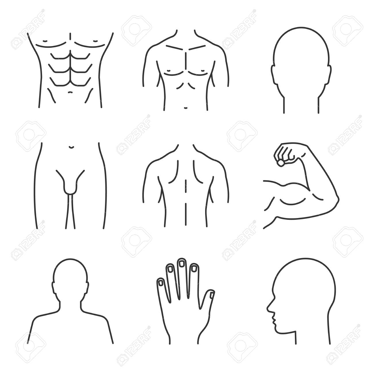 Male Body Parts On Linear Icons Set Head Hand Bicep Torso