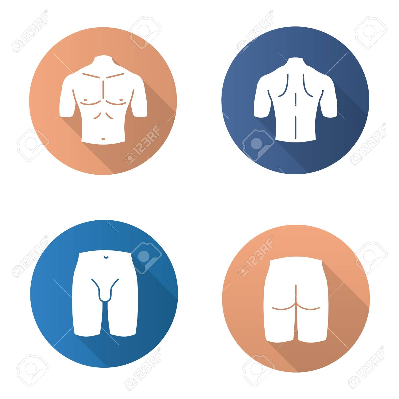 Male body parts flat design long shadow glyph icons set. Muscular chest, back, groin, butt. Vector silhouette illustration - 93335846