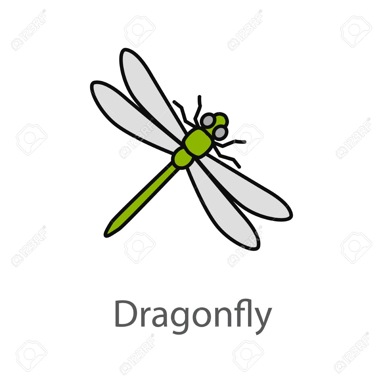 dragonfly color icon insect isolated vector illustration royalty
