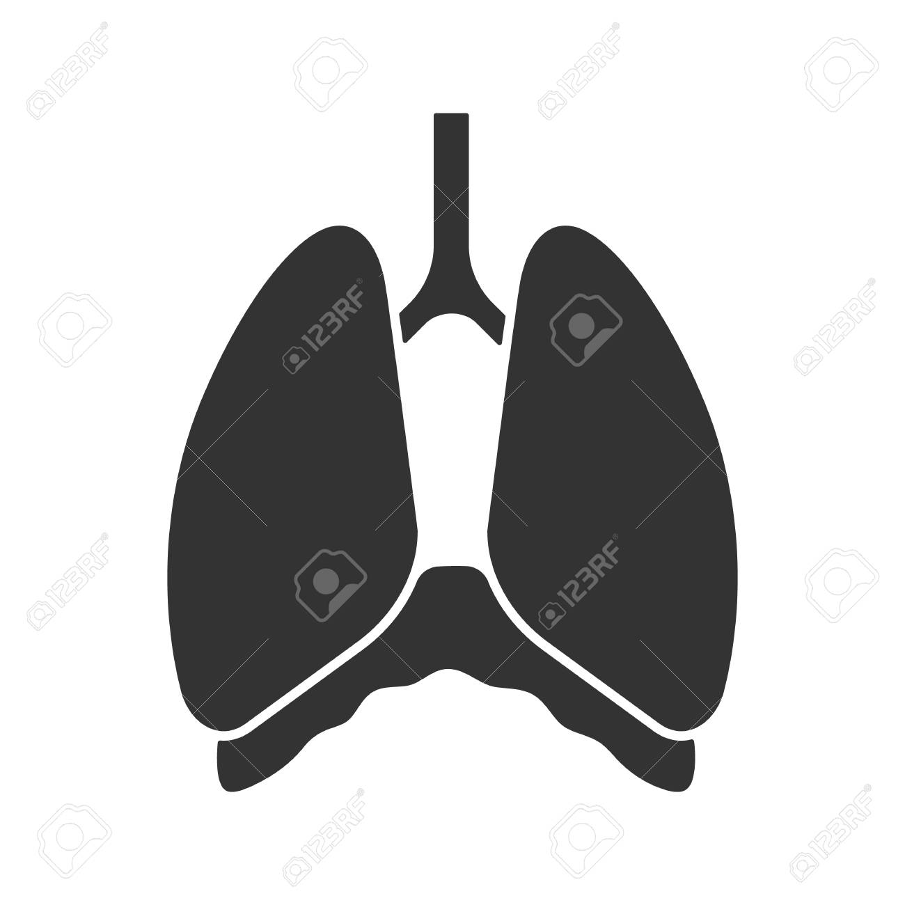 70bf3e01285 Vector isolated illustration. Thoracic cavity glyph icon. Diaphragm. Human  lungs. Silhouette symbol. Negative space.