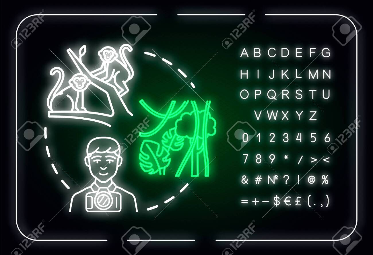 Discover National Parks Neon Light Concept Icon Wildlife Reserve Royalty Free Cliparts Vectors And Stock Illustration Image 140703006