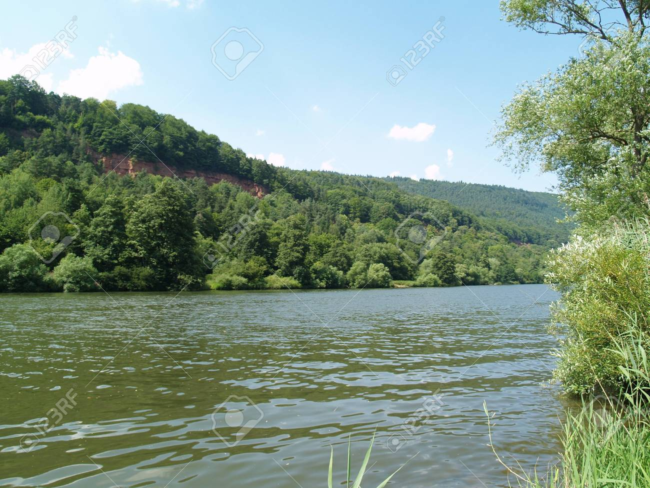 Forest and rock landscape at the river Main Stock Photo - 17079864