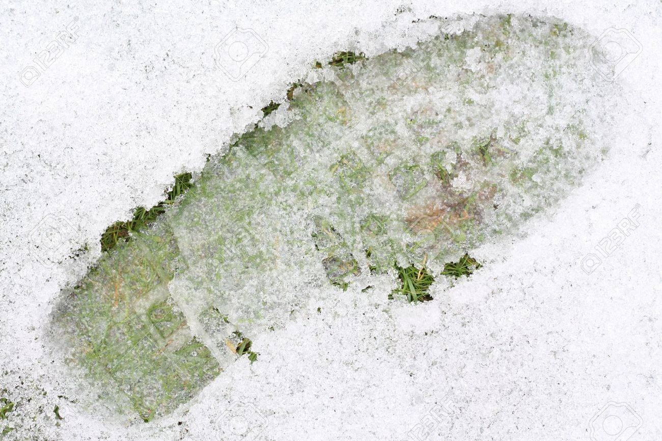 Closeup of a shoeprint on ice covered lawn. Stock Photo - 8391432