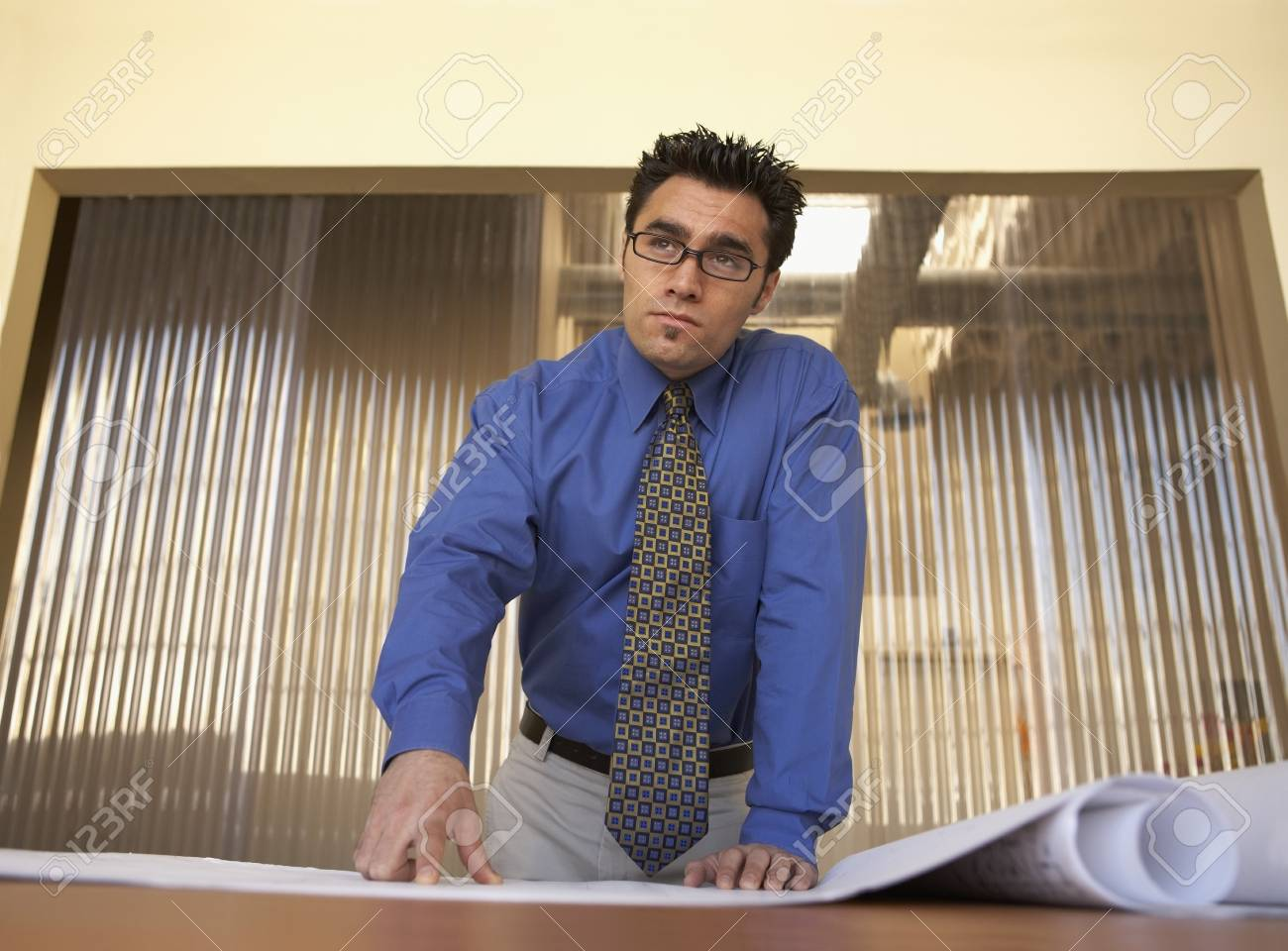 Low angle view of a businessman pointing at a blueprint in an office Stock Photo - 16047174