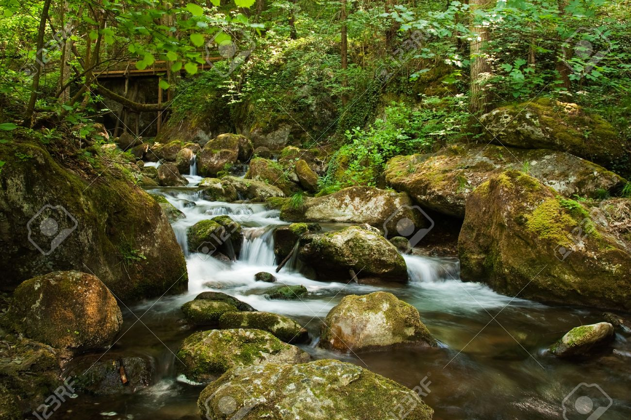 Cascade with mossy rocks in forest of temperate zone central cascade with mossy rocks in forest of temperate zone central europe stock photo altavistaventures Image collections