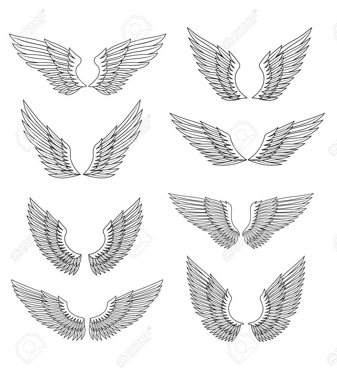 ailes héraldiques et jeu de plume pour la conception, isolé sur