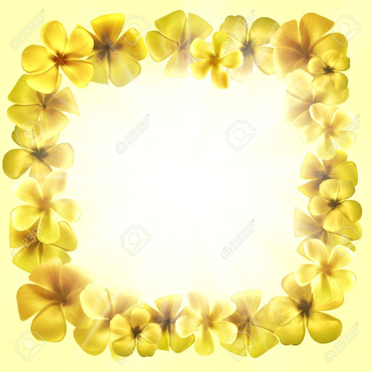 Blumen Bilderrahmen design rahmen form mit goldenen plumeria blumen bilderrahmen