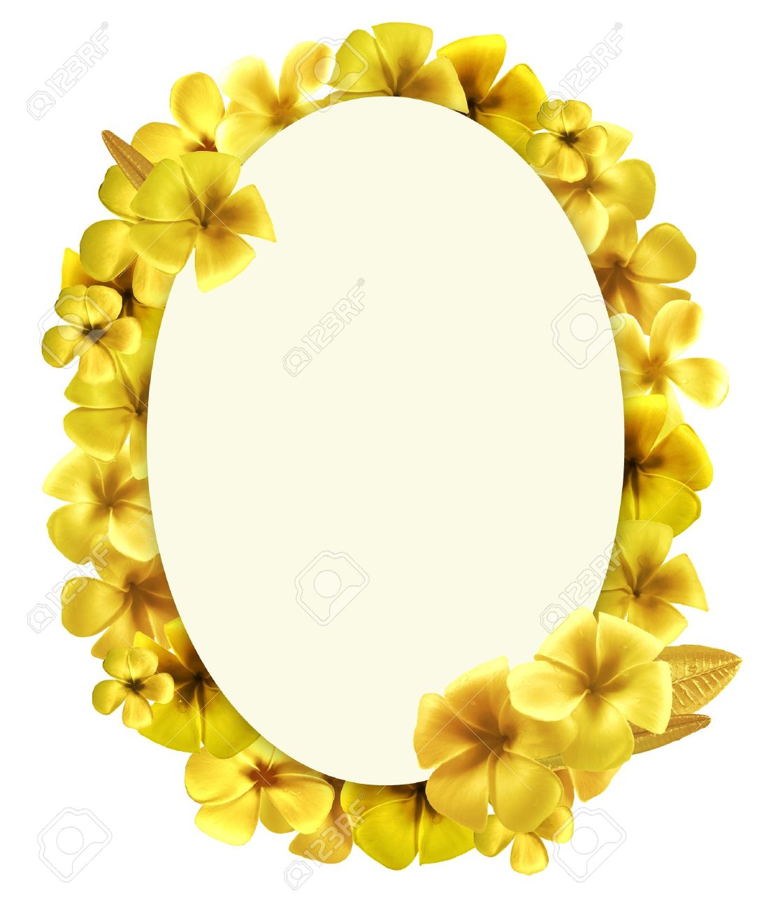 Design Oval Shape With Golden Plumeria Flowers Picture Frames ...