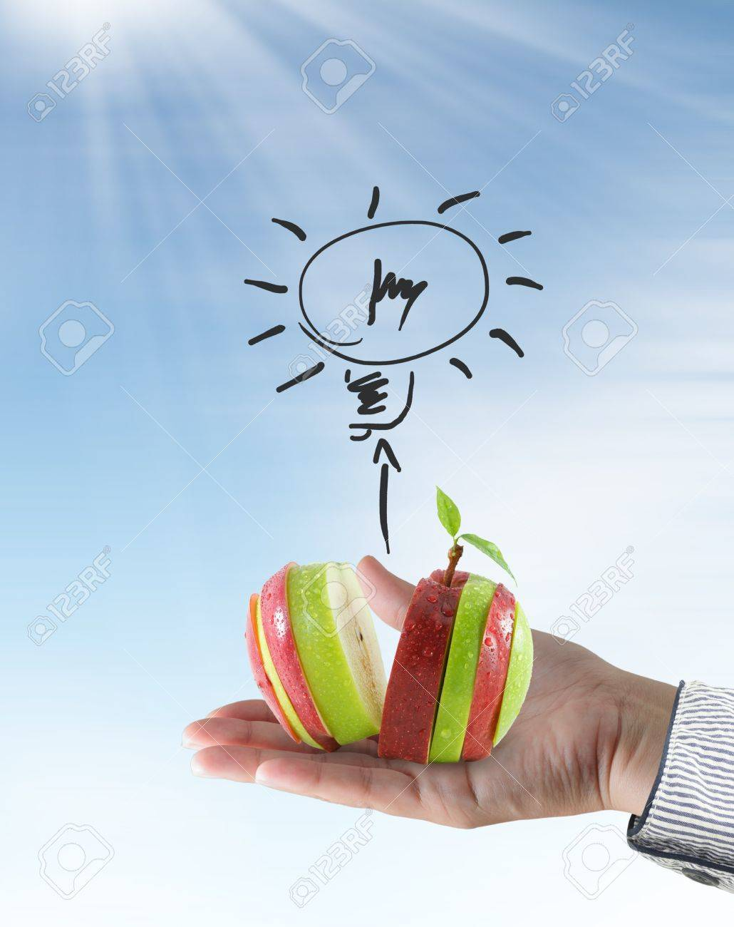 Female hand hold red and green apple slice and symbol light bulb Stock Photo - 10530648