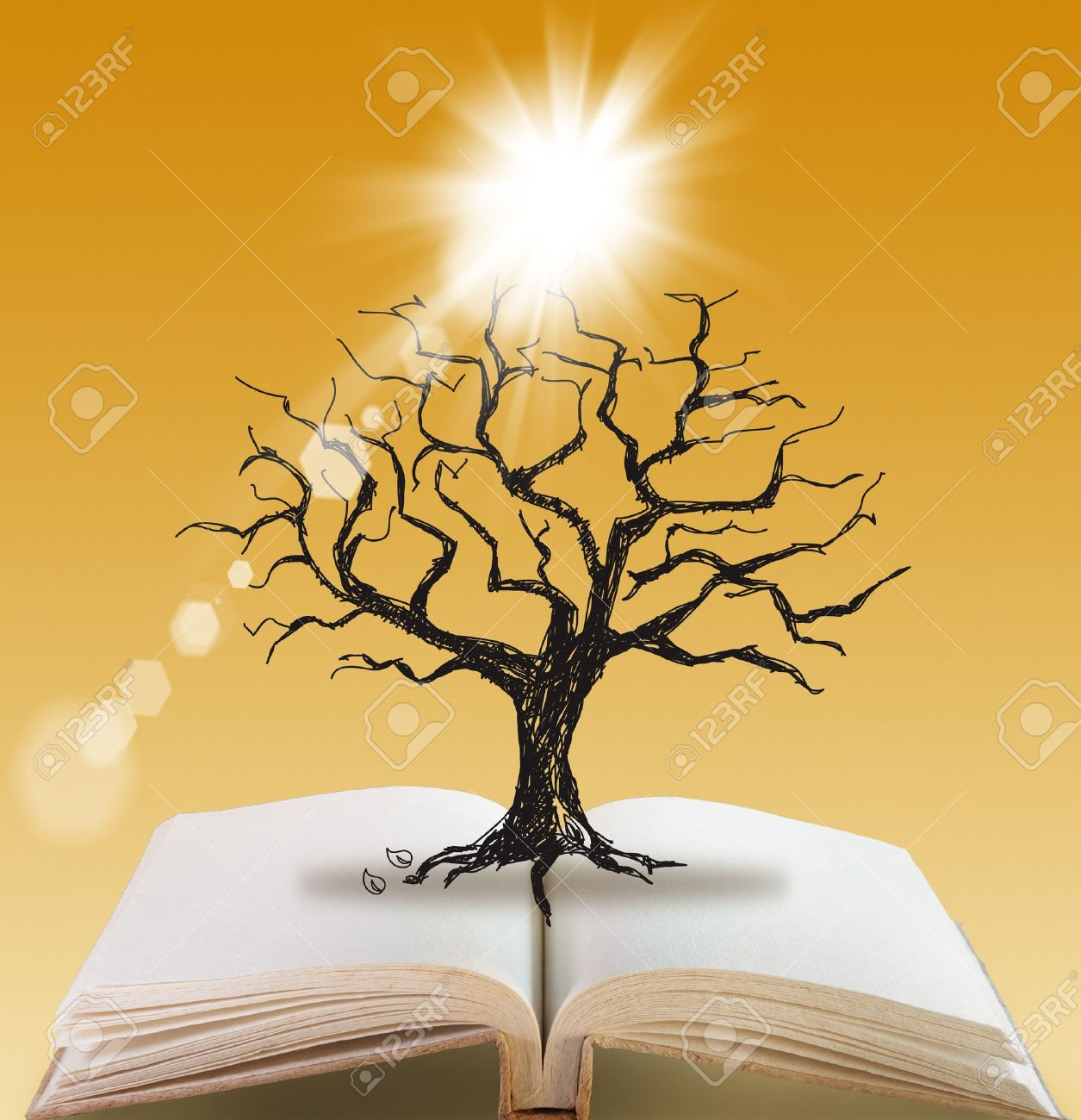 open book of Silhouette dead tree without leaves - 16096468