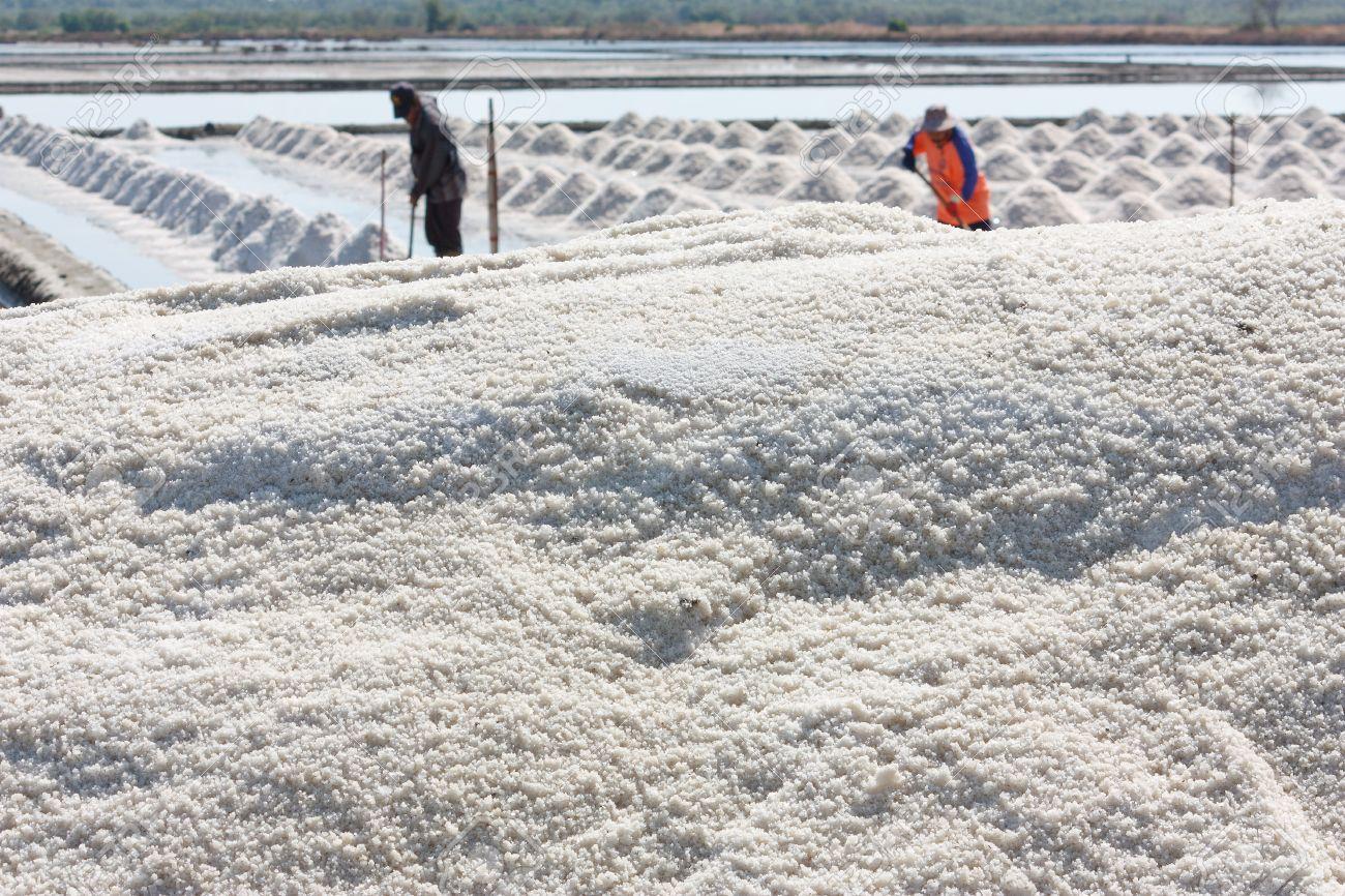 Salt pan (geology) - Wikipedia