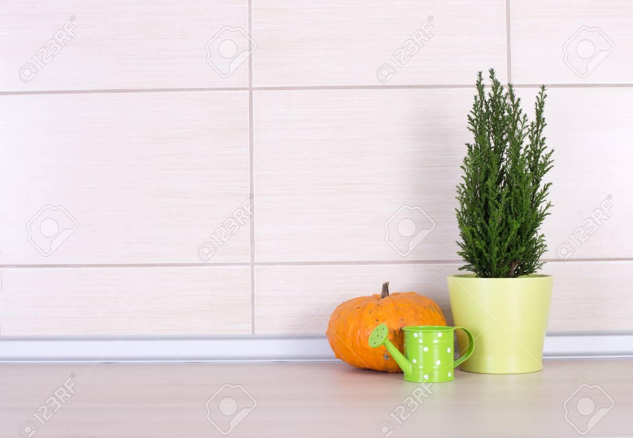 Décoration De Cuisine Sur Le Comptoir, Plante En Pot Vert, Orange ...