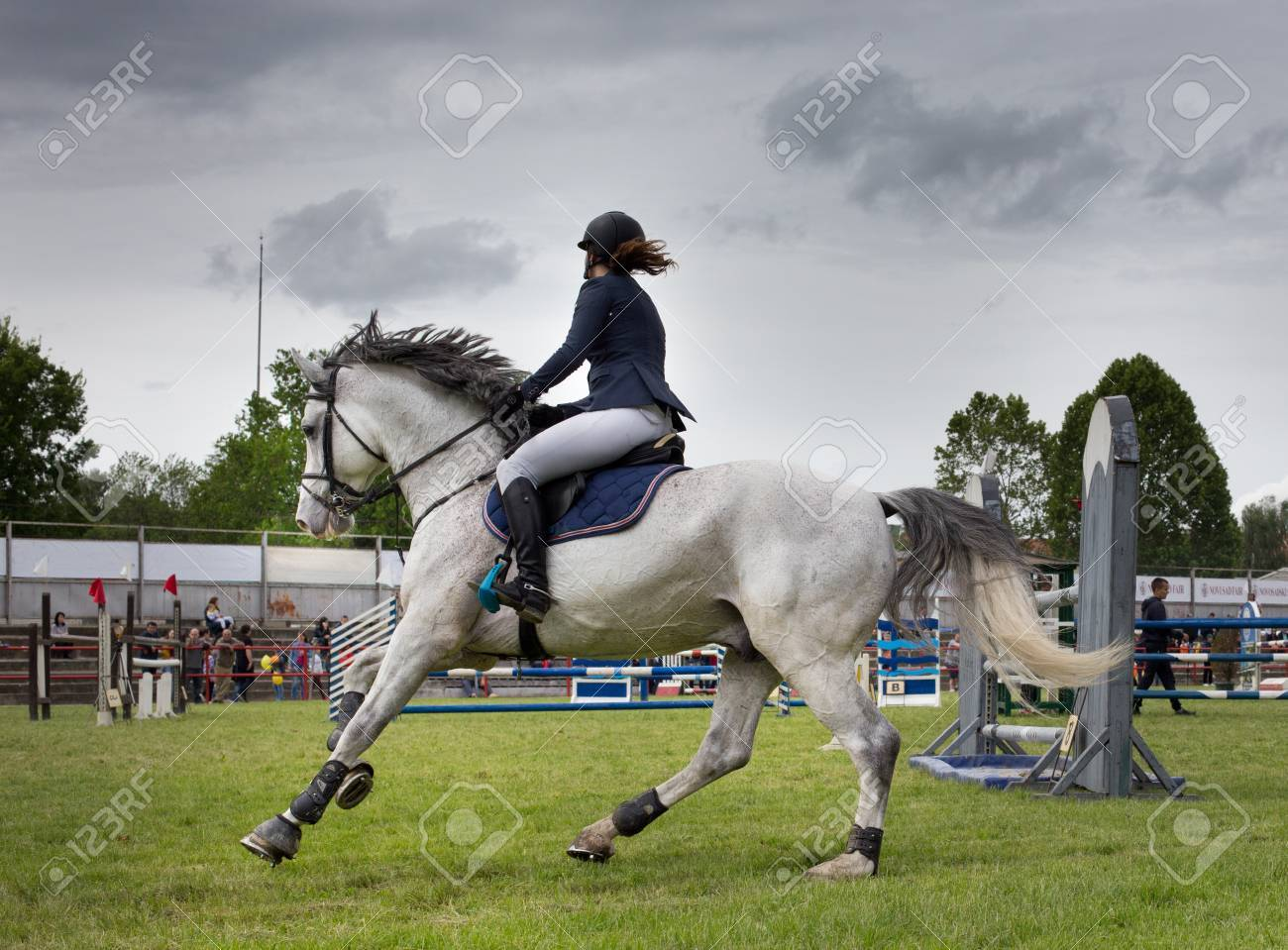 Female Equestrian On White Horse On Jumping Show Stock Photo Picture And Royalty Free Image Image 57945828