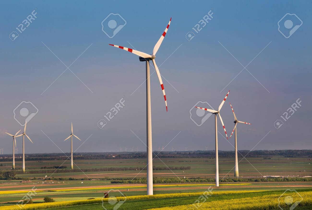 Wind turbine farm in yellow rapeseed fields in spring time. Renewable energy sources concept - 123225857