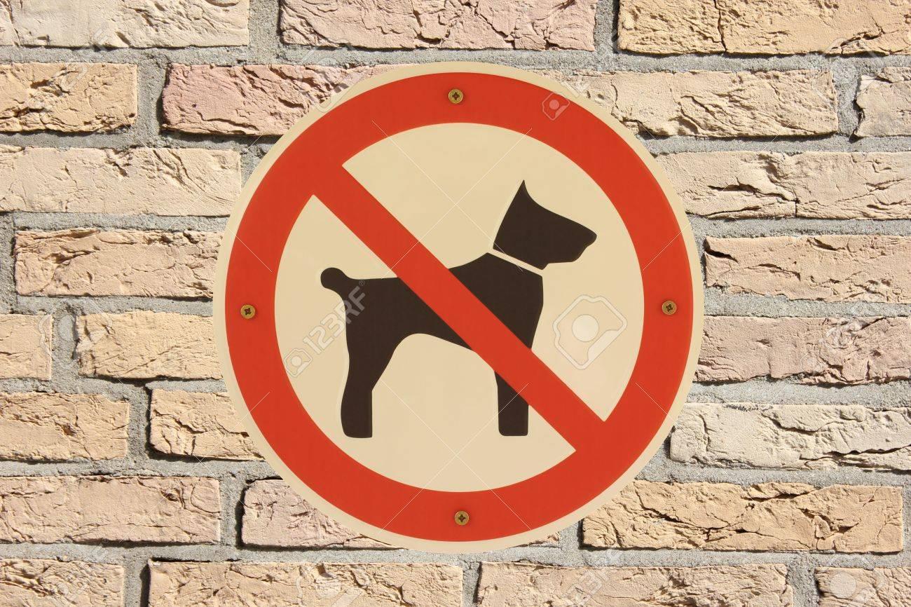 Hunde verboten with brick wall German sign Stock Photo - 16950212