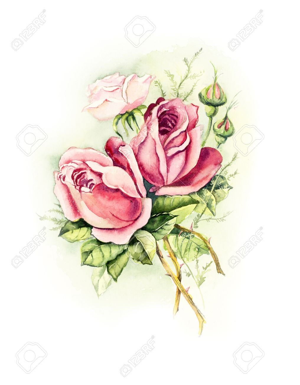 Vintage card pink rose wedding drawings watercolor painting wedding drawings watercolor painting greeting cards rose m4hsunfo