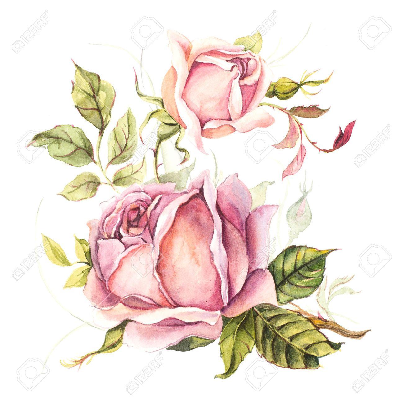 Vintage Karte Rosa Rose Hochzeit Zeichnungen Aquarellmalerei