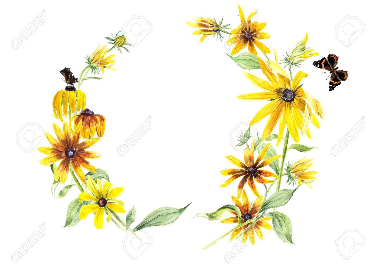 Frame From Rudbeckia And Butterflies Yellow Flowers Background