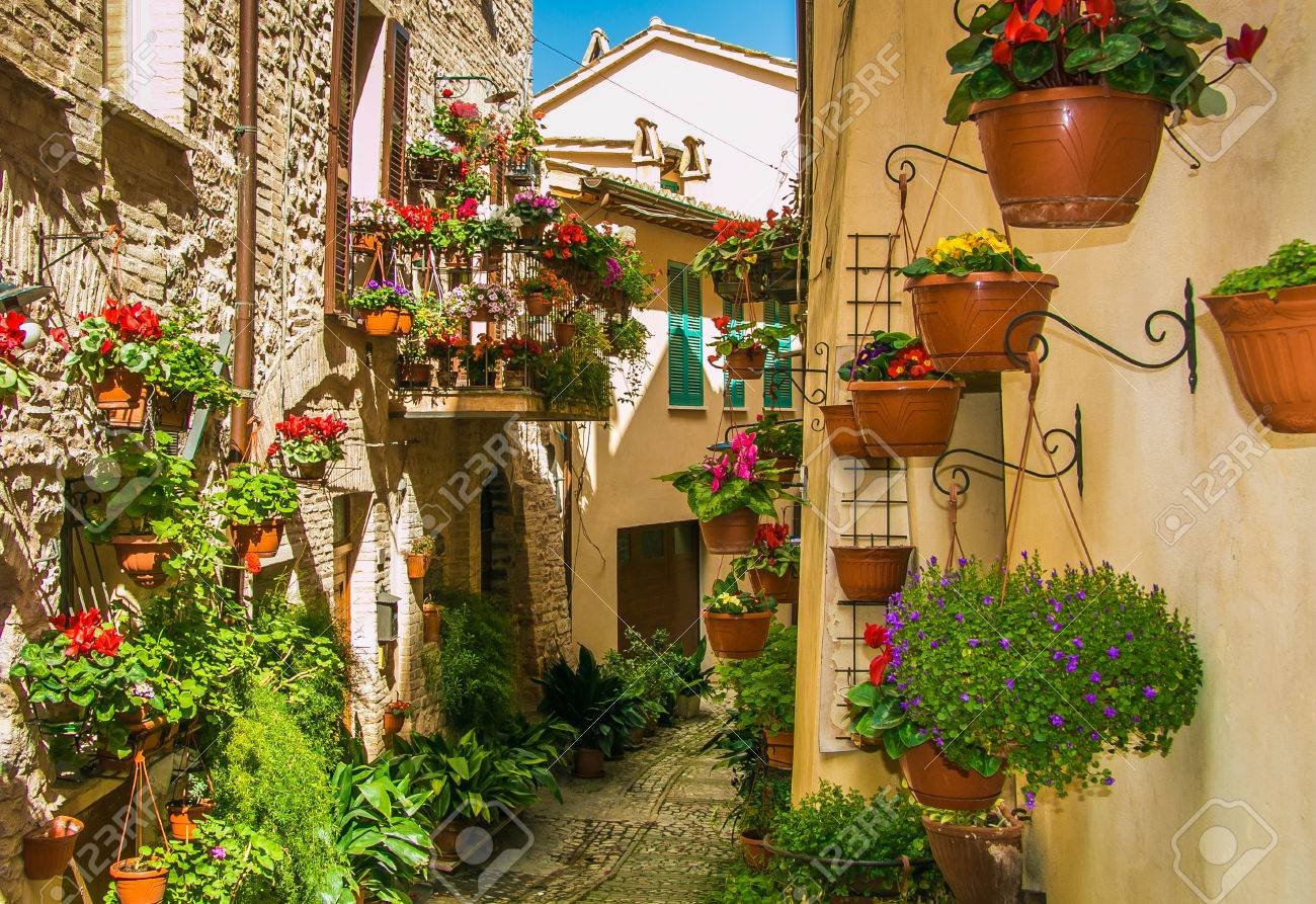 Immagini Piante E Fiori decorazione di strada affascinante, con piante e fiori nella città  medievale di spello (umbria, italia)