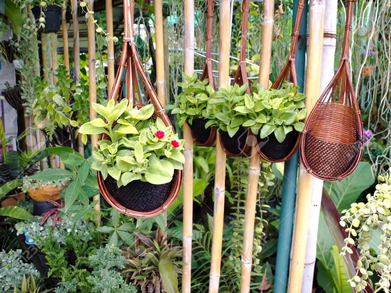 flowerpot Stock Photo - 14046730
