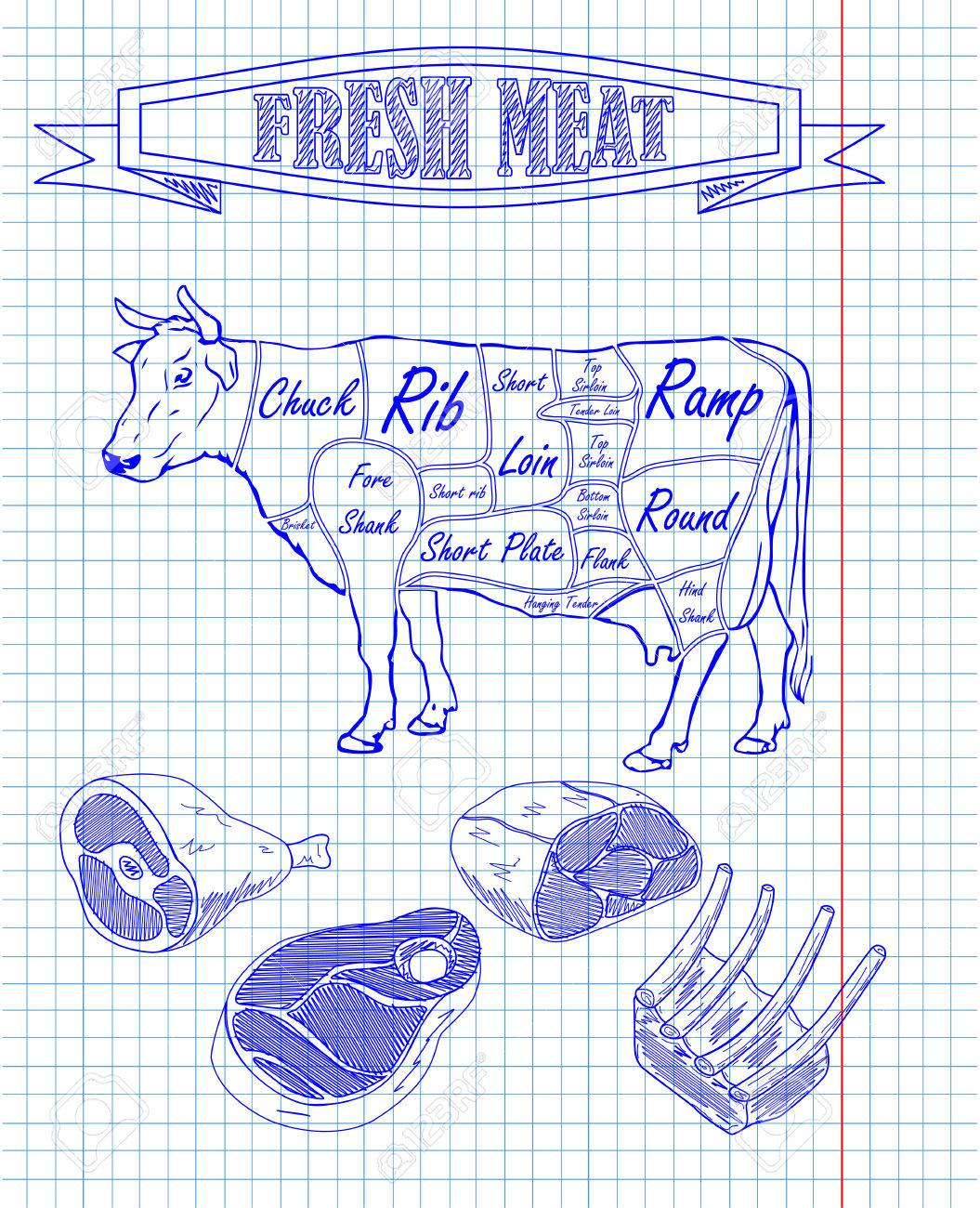 beef scheme and pieces of meat drawing with pan - 52235982