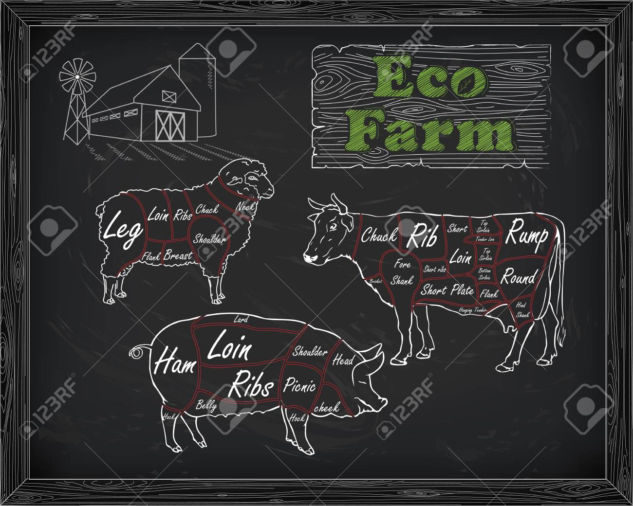 Butchering Beef Diagram Pork Lamb And Farm Drawn In Chalk Royalty Pig Butcher Stock Vector 54564027