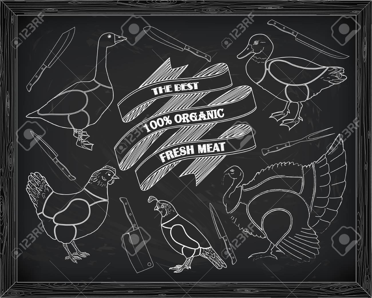 Quail Meat Cuts Diagram Switch Chickencutsdiagram Beautiful Scheme Cutting Chicken Turkey Duck Goose Drawn Rh 123rf Com Beef Steak Lamb