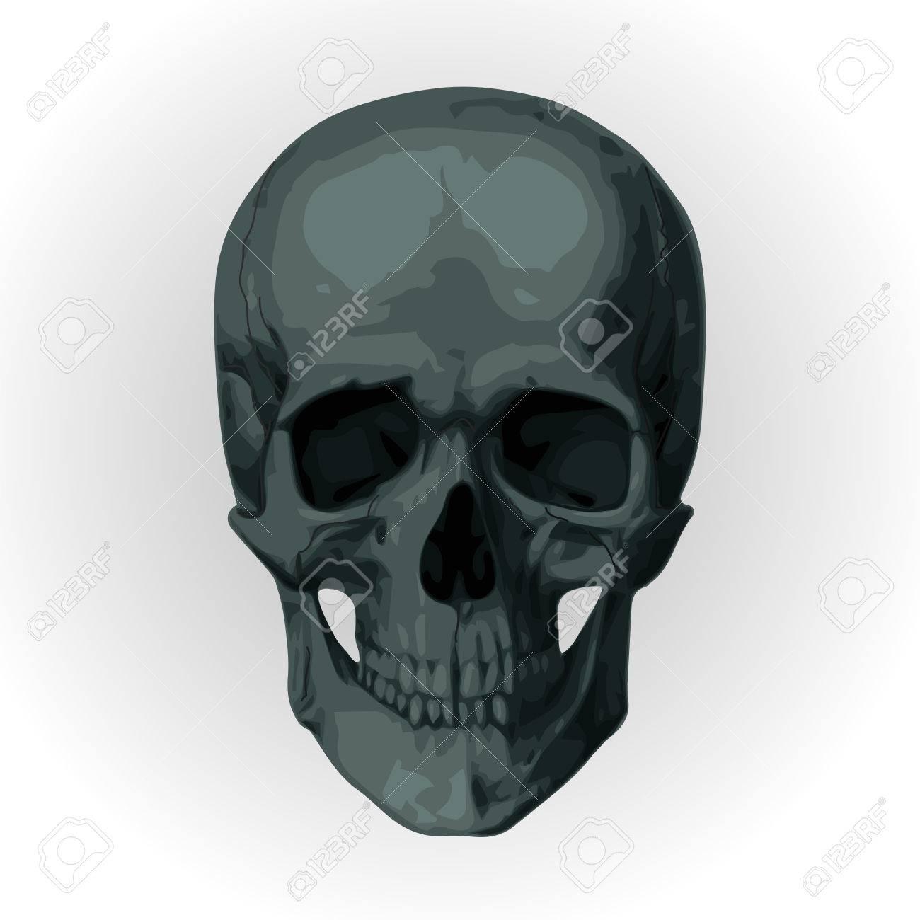 骸骨髑髏 ロイヤリティフリーク...
