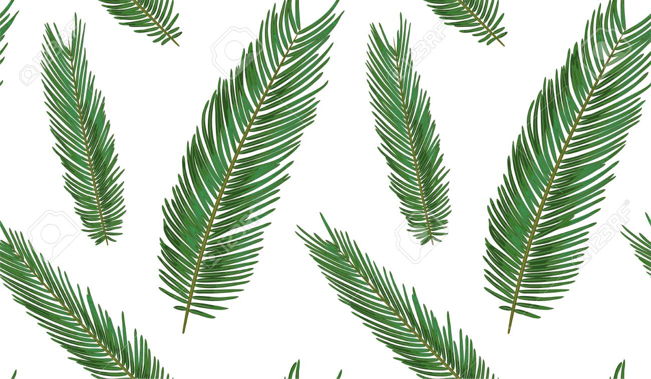 Seamless Pattern With Sago Palm Tropical Seeded Branch Green Royalty Free Cliparts Vectors And Stock Illustration Image 100748376