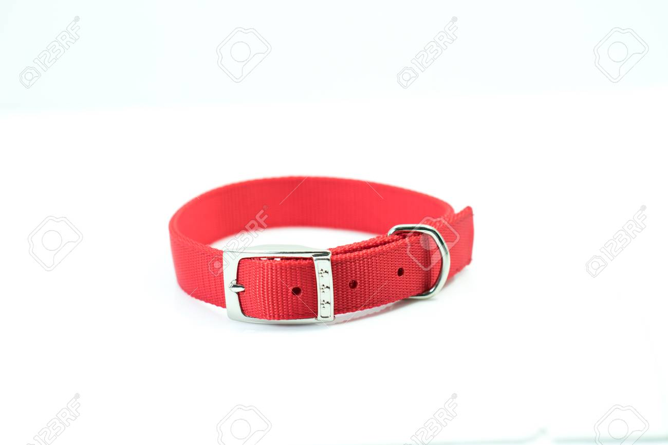 Pet supplies about collars of red isolated on white background. - 92853625