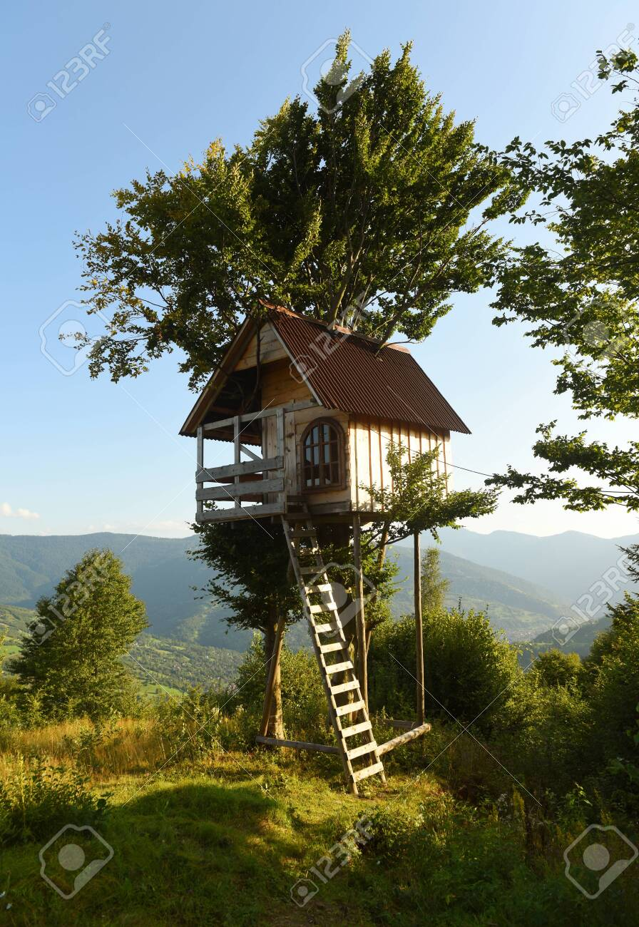 Picture of: Tree House In The Mountains A Children S Treehouse Stock Photo Picture And Royalty Free Image Image 147508992
