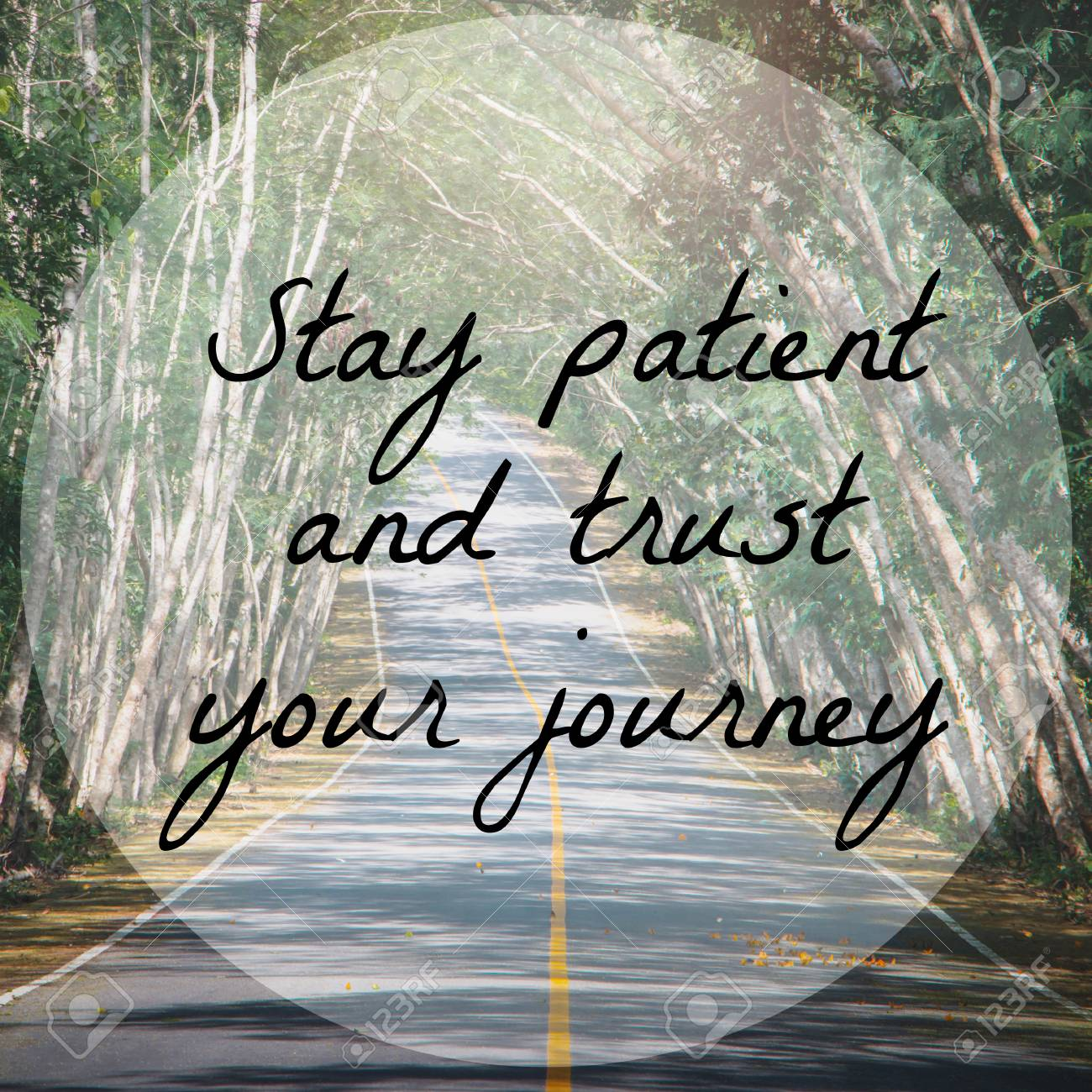Inspirational quote on road and tree background with vintage..