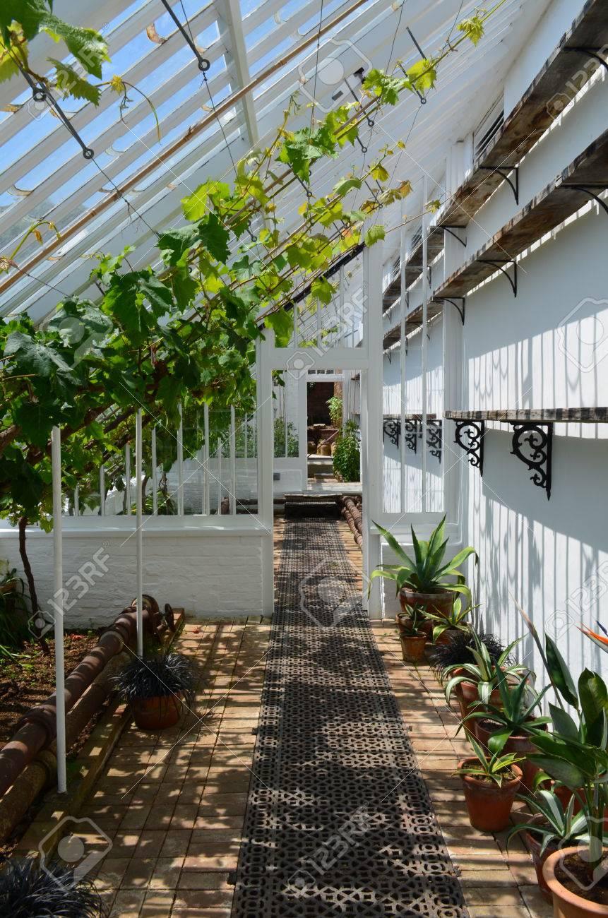 Intérieur D\'une Grande Serre De Jardin Banque D\'Images Et Photos ...