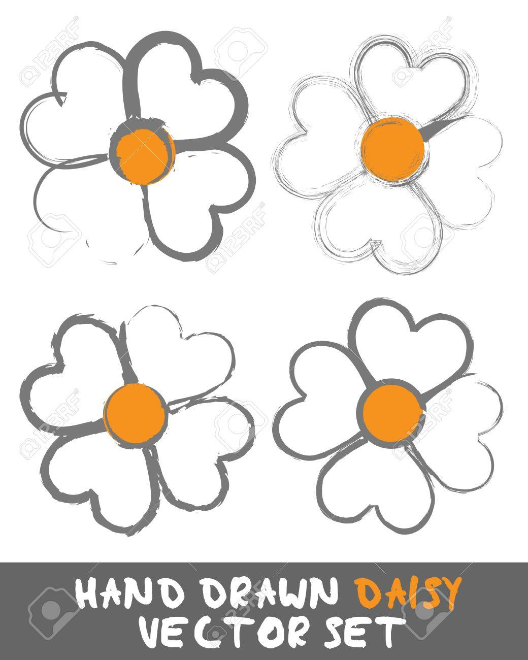 Hand drawn Daisy Set Stock Vector - 12482719