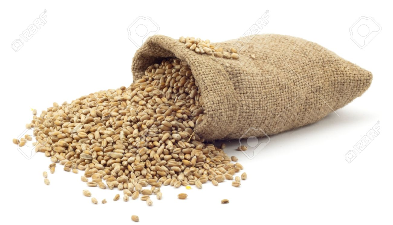 bag of wheat on a white background Stock Photo - 7080817
