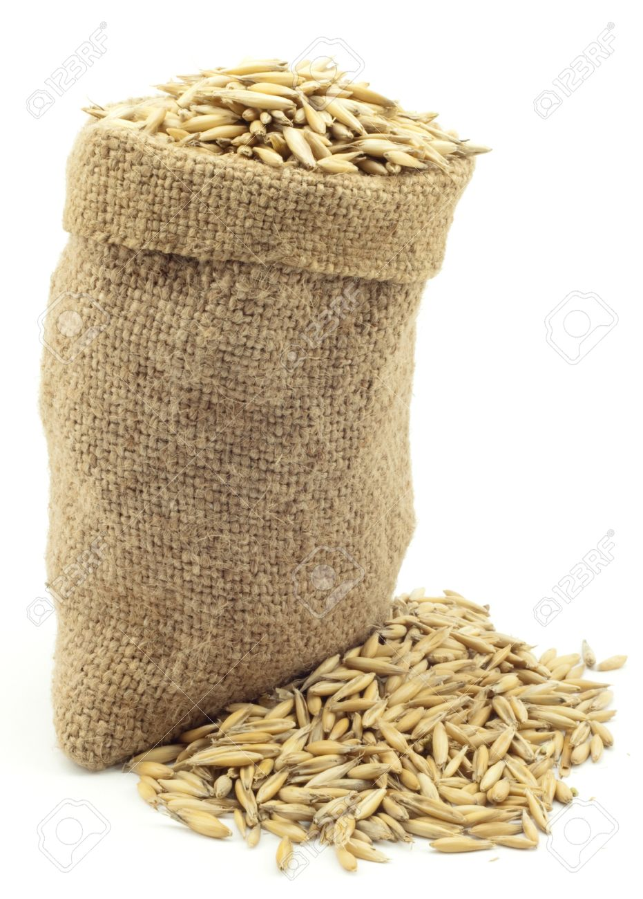 bag of oats on a white background Stock Photo - 7080835