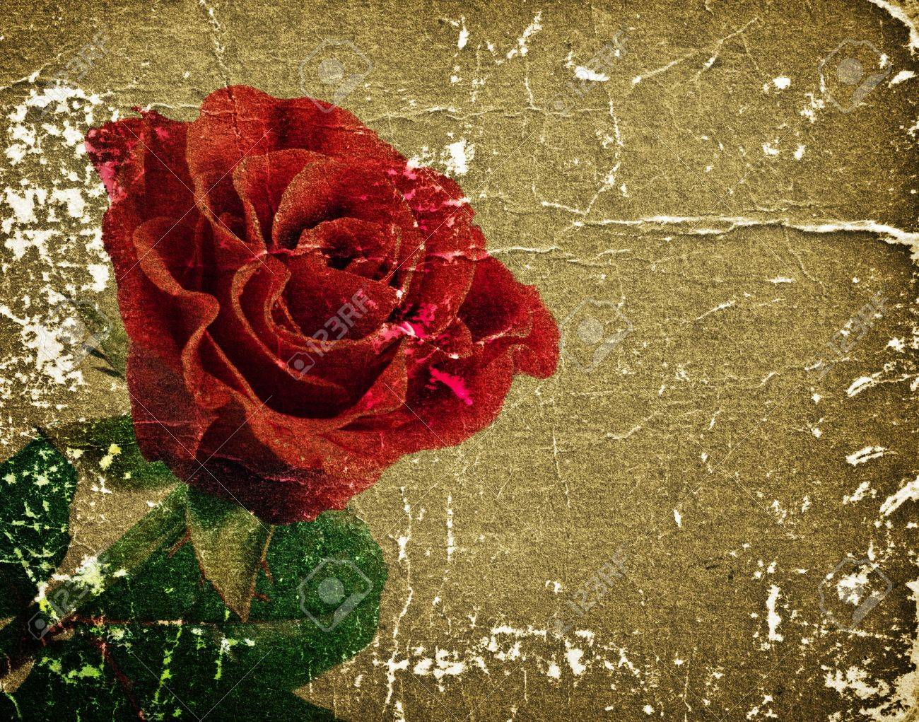 beautiful red rose on a retro background for your design Stock Photo - 11276277