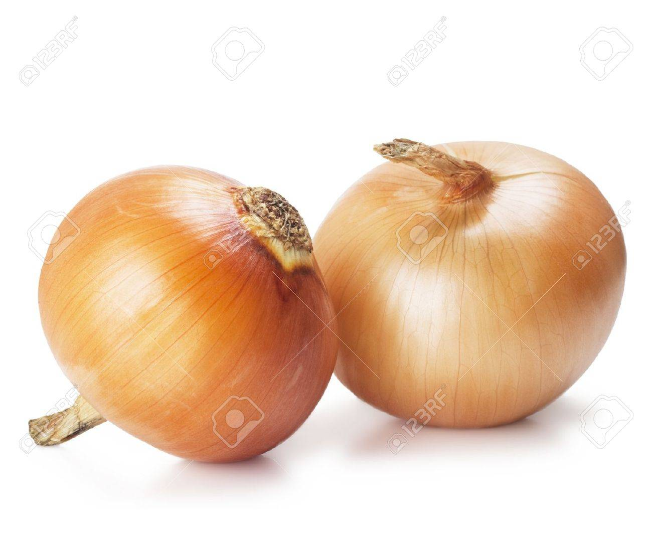Ripe onions on a white background Stock Photo - 12363860
